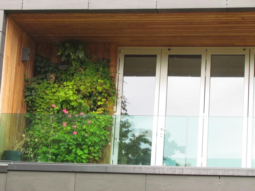 geen verzorging concepthouse